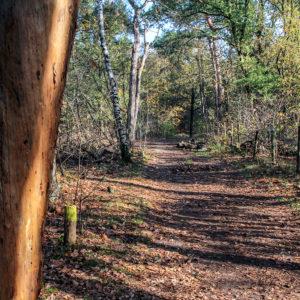 Bomenpark